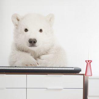 Forclaire Dekorace na zeď - lední medvídek 76x70cm